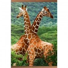 Электрообогреватель настенный «Домашний очаг» Жирафы