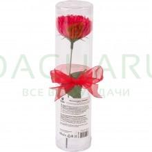 Мыльные цветы «Гвоздика» в ПВХ тубе 1 шт.