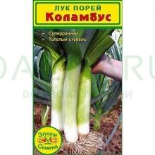 Лук порей Коламбус (0,25 гр.)