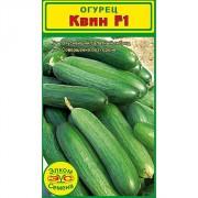 Огурец-салатный Квин F1 (10 сем.)