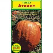 Тыква крупноплодная Атлант (5 сем.)