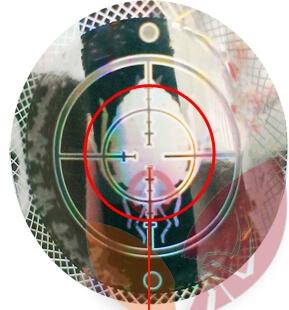 Увеличенная голограмма с флакона средства от клопов Палач, фото